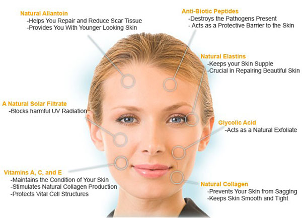 rejuvapen skin care a total new you salon